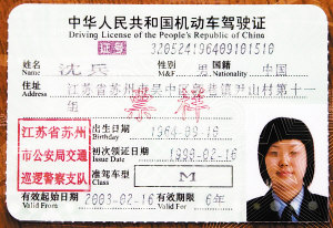 Chinese Driver's Licence Translation