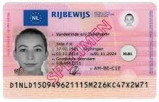 Dutch Driver's Licence Translation