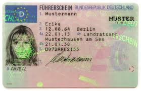 German Driver's Licence Translation