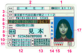 Japanese Driver's Licence Translation