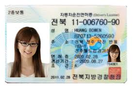 Korean Driver's Licence Translation